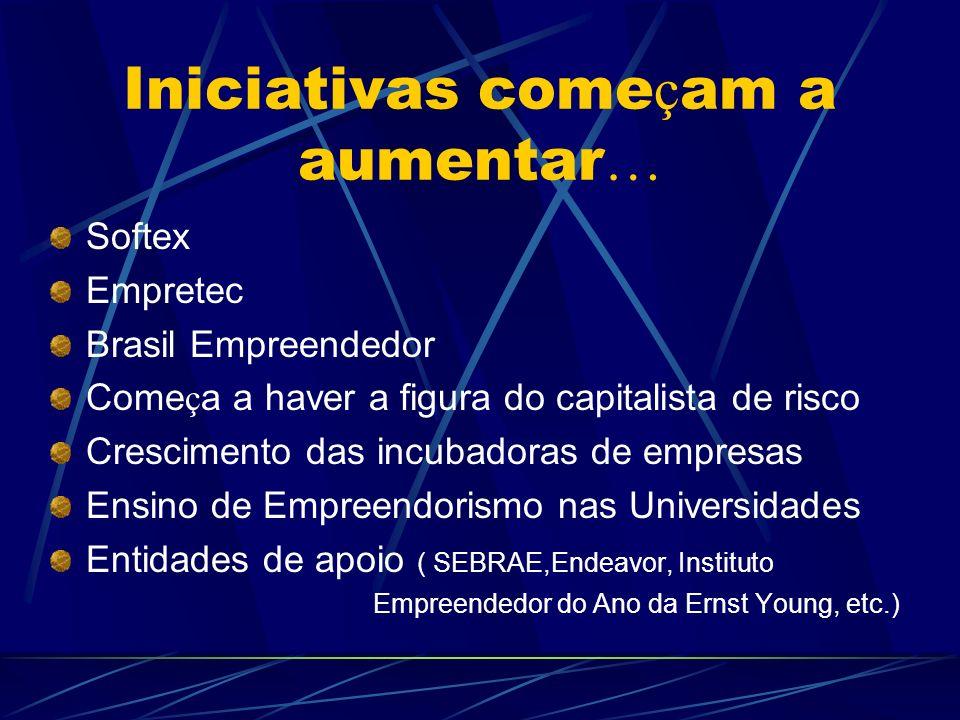 Iniciativas come ç am a aumentar … Softex Empretec Brasil Empreendedor Come ç a a haver a figura do capitalista de risco Crescimento das incubadoras d