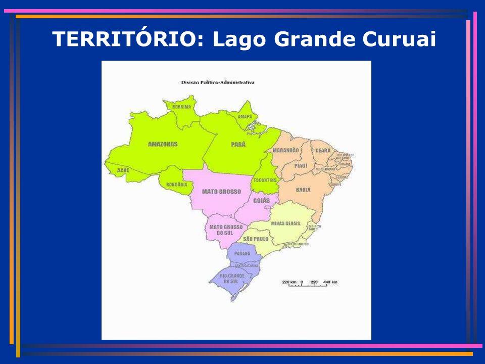 TERRITÓRIO: Lago Grande Curuai