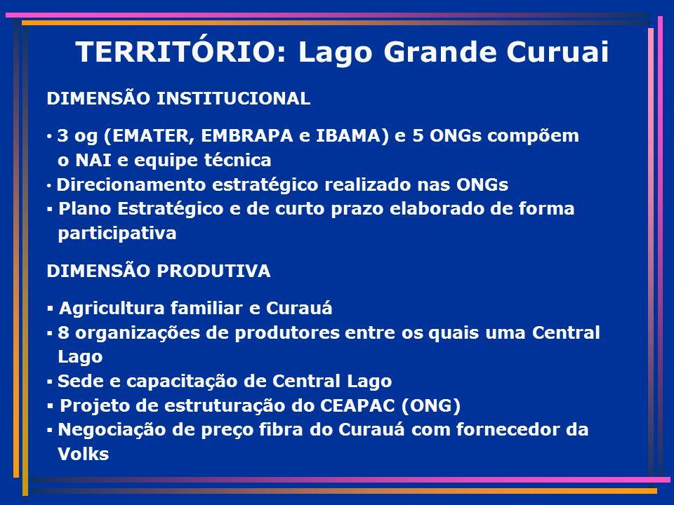 TERRITÓRIO: Lago Grande Curuai DIMENSÃO INSTITUCIONAL 3 og (EMATER, EMBRAPA e IBAMA) e 5 ONGs compõem o NAI e equipe técnica Direcionamento estratégico realizado nas ONGs Plano Estratégico e de curto prazo elaborado de forma participativa DIMENSÃO PRODUTIVA Agricultura familiar e Curauá 8 organizações de produtores entre os quais uma Central Lago Sede e capacitação de Central Lago Projeto de estruturação do CEAPAC (ONG) Negociação de preço fibra do Curauá com fornecedor da Volks