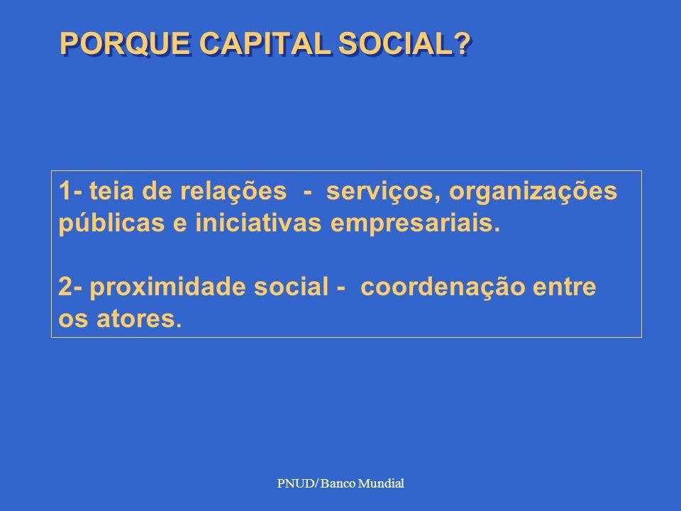 PNUD/ Banco Mundial PORQUE CAPITAL SOCIAL? 1- teia de relações - serviços, organizações públicas e iniciativas empresariais. 2- proximidade social - c