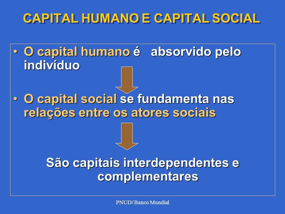 PNUD/ Banco Mundial CAPITAL HUMANO E CAPITAL SOCIAL O capital humano é absorvido pelo indivíduoO capital humano é absorvido pelo indivíduo O capital s