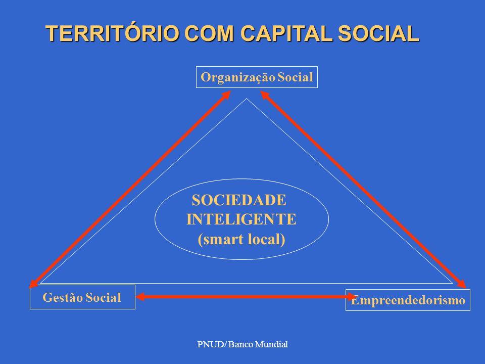 PNUD/ Banco Mundial Resgata a endogenia do território via: articulação de atores Construção de parcerias e insitucionalidades INTEGRAÇÃO DO LOCAL NO GLOBAL DINÂMICA DO CAPITAL SOCIAL