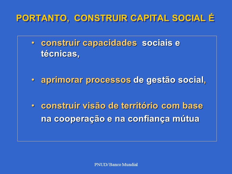 PNUD/ Banco Mundial PORTANTO, CONSTRUIR CAPITAL SOCIAL É construir capacidades sociais e técnicas,construir capacidades sociais e técnicas, aprimorar
