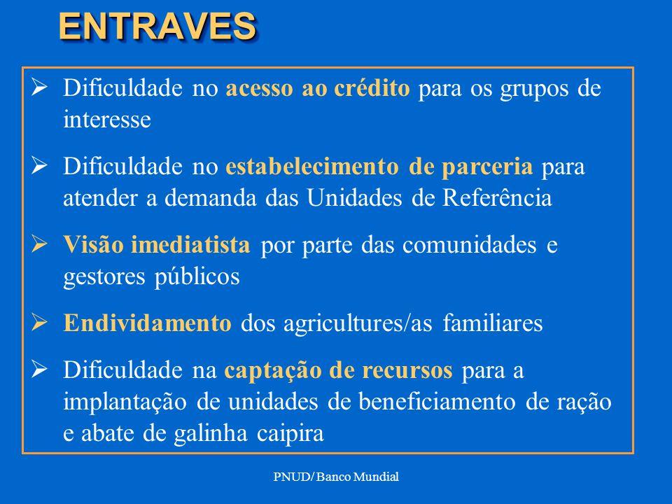 PNUD/ Banco Mundial ENTRAVESENTRAVES Dificuldade no acesso ao crédito para os grupos de interesse Dificuldade no estabelecimento de parceria para aten