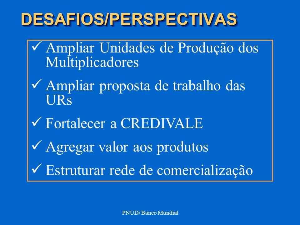 PNUD/ Banco Mundial DESAFIOS/PERSPECTIVASDESAFIOS/PERSPECTIVAS Ampliar Unidades de Produção dos Multiplicadores Ampliar proposta de trabalho das URs F