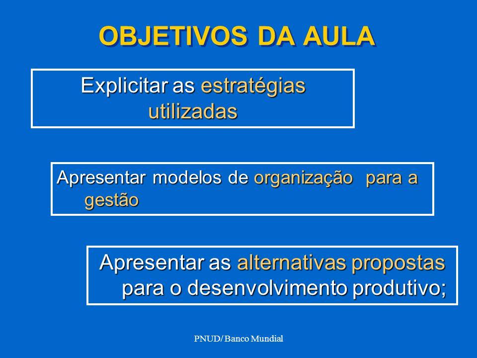 PNUD/ Banco Mundial OBJETIVOS DA AULA Apresentar modelos de organização para a gestão Explicitar as estratégias utilizadas Apresentar as alternativas