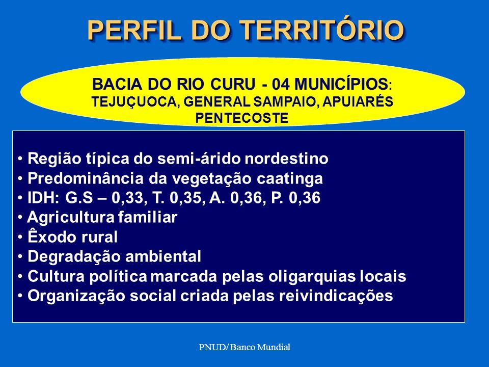PNUD/ Banco Mundial PERFIL DO TERRITÓRIO BACIA DO RIO CURU - 04 MUNICÍPIOS : TEJUÇUOCA, GENERAL SAMPAIO, APUIARÉS PENTECOSTE Região típica do semi-ári