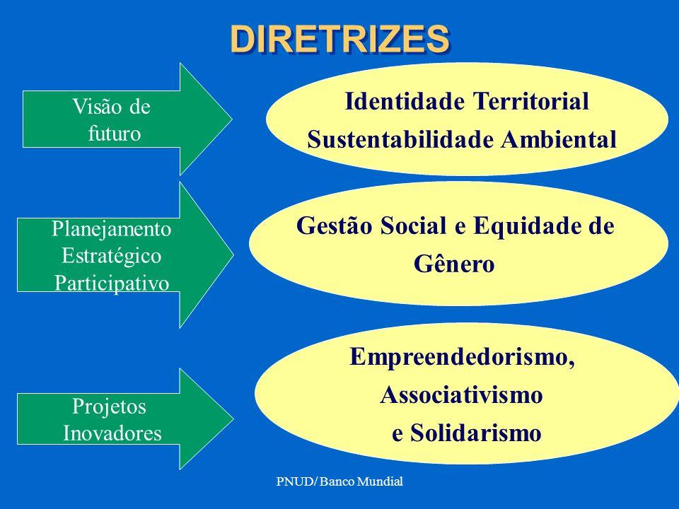 PNUD/ Banco Mundial DIRETRIZES Visão de futuro Identidade Territorial Sustentabilidade Ambiental Gestão Social e Equidade de Gênero Planejamento Estra