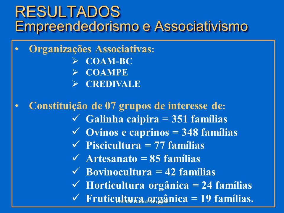 PNUD/ Banco Mundial RESULTADOS Empreendedorismo e Associativismo Organizações Associativas : COAM-BC COAMPE CREDIVALE Constituição de 07 grupos de int