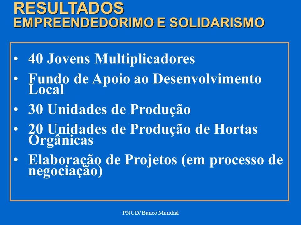 PNUD/ Banco Mundial 40 Jovens Multiplicadores Fundo de Apoio ao Desenvolvimento Local 30 Unidades de Produção 20 Unidades de Produção de Hortas Orgâni