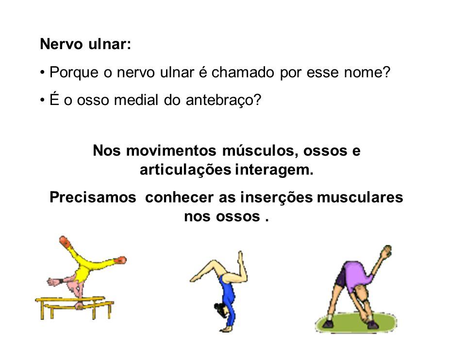 Nervo ulnar: Porque o nervo ulnar é chamado por esse nome? É o osso medial do antebraço? Nos movimentos músculos, ossos e articulações interagem. Prec