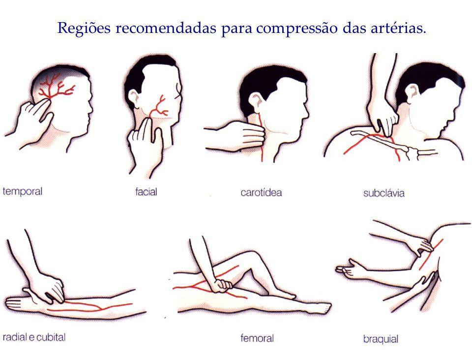 Regiões recomendadas para compressão das artérias.