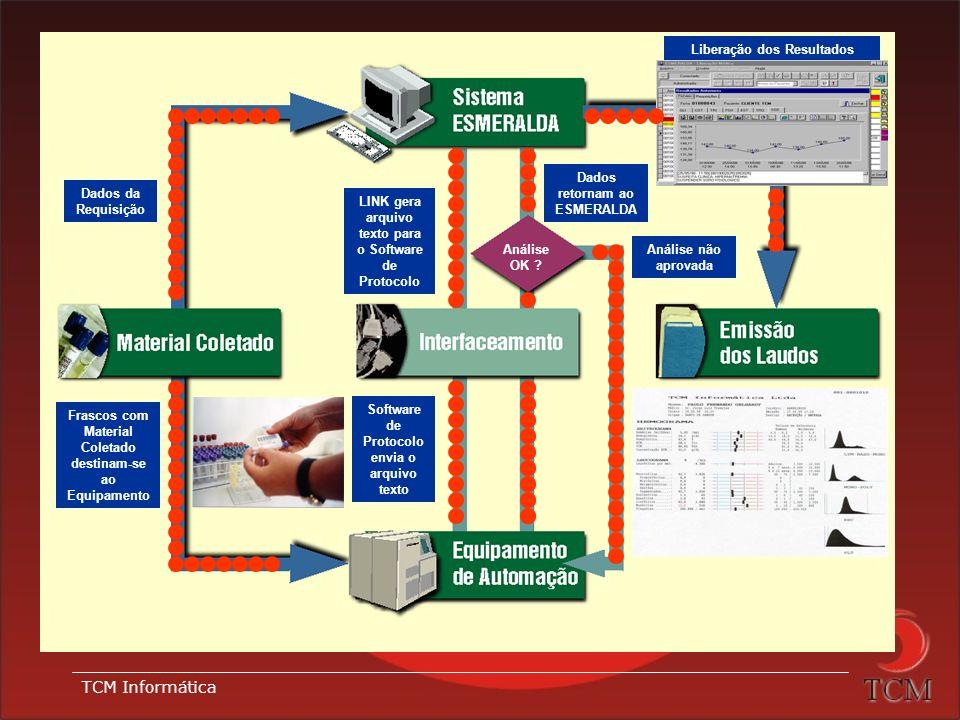 TCM Informática Componentes do Interfaceamento: Cabos para interligação Softwares de comunicação: Software de Protocolo. Gera um arquivo a partir dos