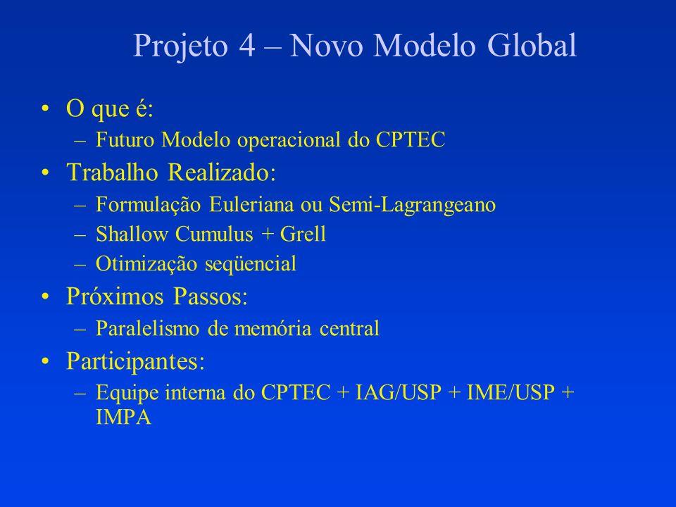 Projeto 4 – Novo Modelo Global O que é: –Futuro Modelo operacional do CPTEC Trabalho Realizado: –Formulação Euleriana ou Semi-Lagrangeano –Shallow Cum