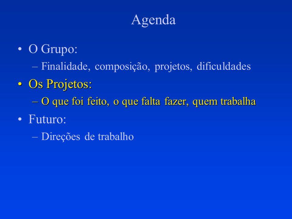 Agenda O Grupo: –Finalidade, composição, projetos, dificuldades Os Projetos:Os Projetos: –O que foi feito, o que falta fazer, quem trabalha Futuro: –D