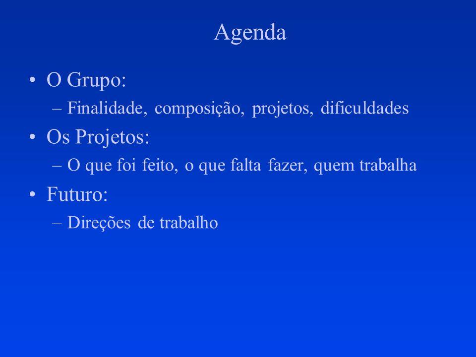 Agenda O Grupo: –Finalidade, composição, projetos, dificuldades Os Projetos: –O que foi feito, o que falta fazer, quem trabalha Futuro: –Direções de t