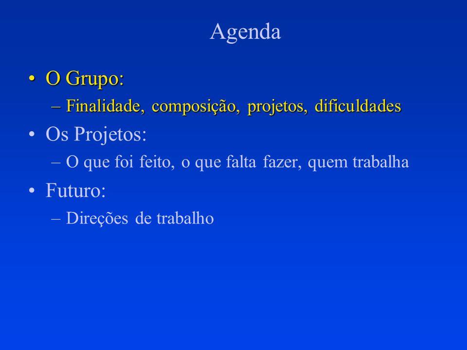 Agenda O Grupo:O Grupo: –Finalidade, composição, projetos, dificuldades Os Projetos: –O que foi feito, o que falta fazer, quem trabalha Futuro: –Direç
