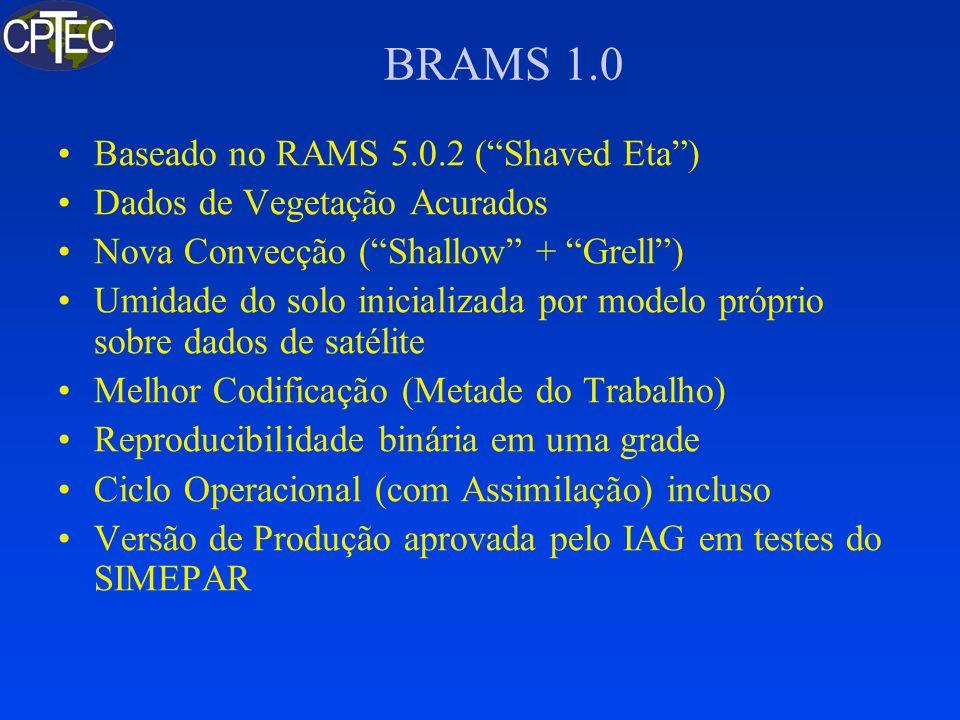 BRAMS 1.0 Baseado no RAMS 5.0.2 (Shaved Eta) Dados de Vegetação Acurados Nova Convecção (Shallow + Grell) Umidade do solo inicializada por modelo próp