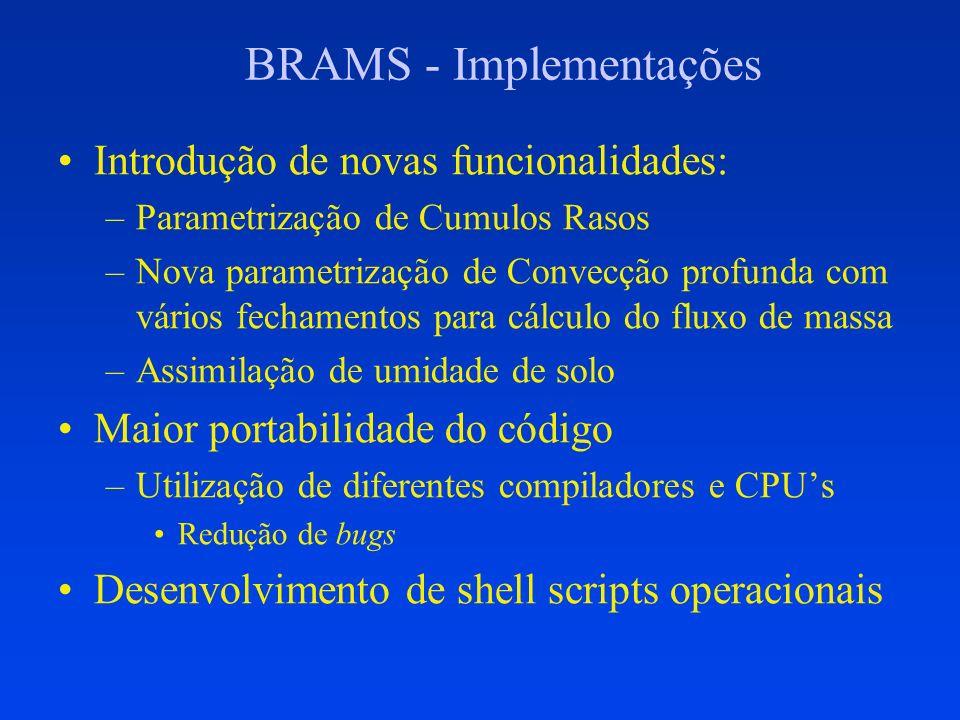 BRAMS - Implementações Introdução de novas funcionalidades: –Parametrização de Cumulos Rasos –Nova parametrização de Convecção profunda com vários fec