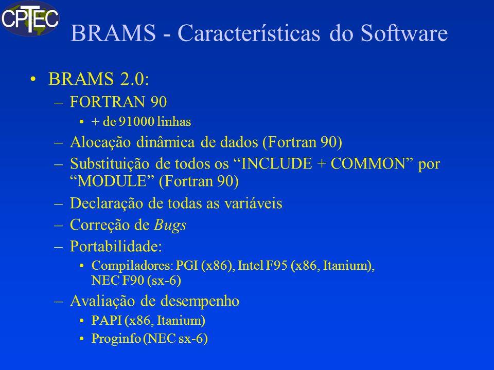 BRAMS - Características do Software BRAMS 2.0: –FORTRAN 90 + de 91000 linhas –Alocação dinâmica de dados (Fortran 90) –Substituição de todos os INCLUD