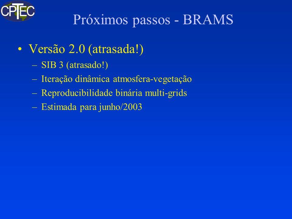 Próximos passos - BRAMS Versão 2.0 (atrasada!) –SIB 3 (atrasado!) –Iteração dinâmica atmosfera-vegetação –Reproducibilidade binária multi-grids –Estim