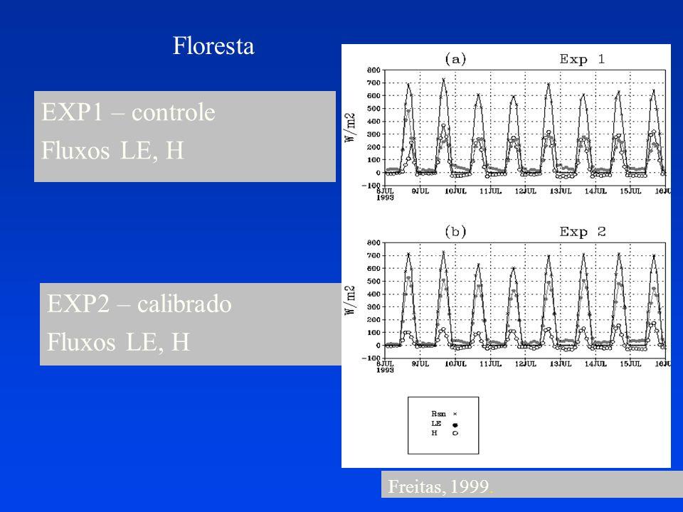 Floresta EXP1 – controle Fluxos LE, H EXP2 – calibrado Fluxos LE, H Freitas, 1999.