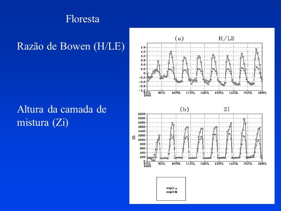Floresta Razão de Bowen (H/LE) Altura da camada de mistura (Zi)