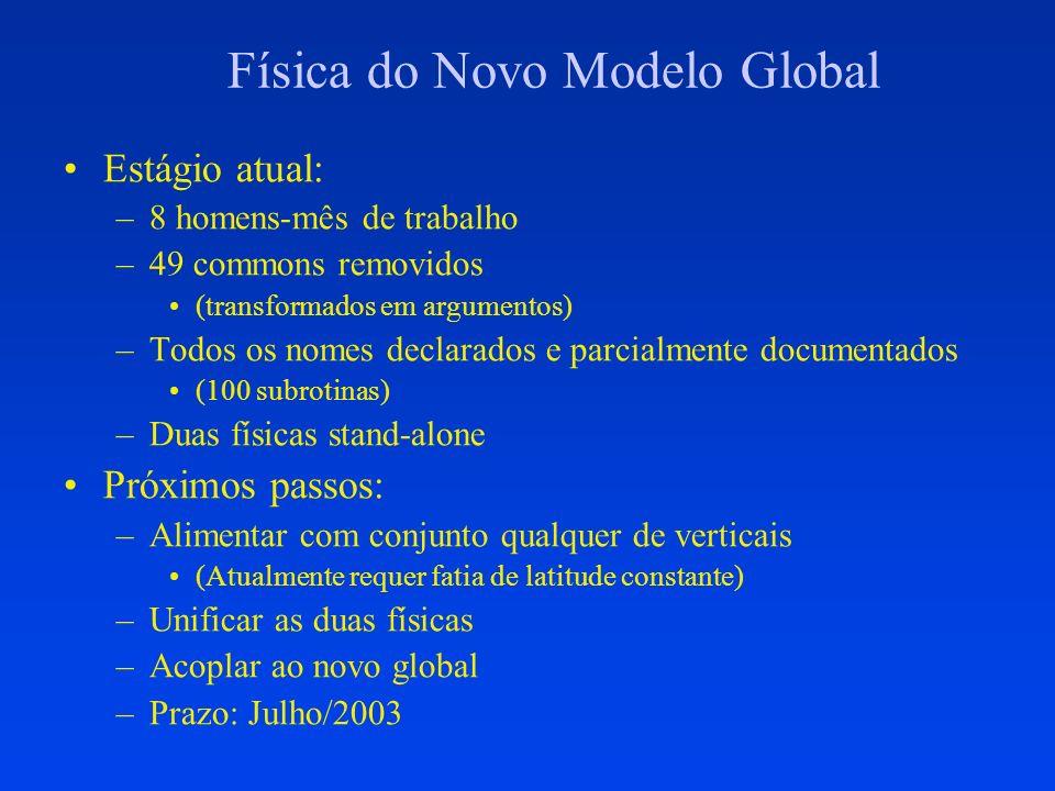 Física do Novo Modelo Global Estágio atual: –8 homens-mês de trabalho –49 commons removidos (transformados em argumentos) –Todos os nomes declarados e