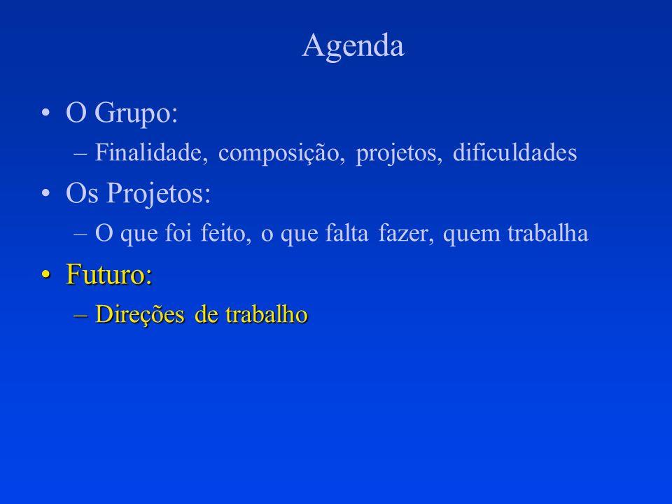 Agenda O Grupo: –Finalidade, composição, projetos, dificuldades Os Projetos: –O que foi feito, o que falta fazer, quem trabalha Futuro:Futuro: –Direçõ