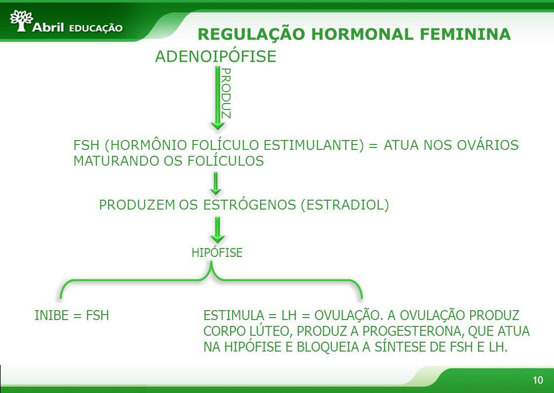 10 REGULAÇÃO HORMONAL FEMININA ADENOIPÓFISE PRODUZ FSH (HORMÔNIO FOLÍCULO ESTIMULANTE) = ATUA NOS OVÁRIOS MATURANDO OS FOLÍCULOS PRODUZEM OS ESTRÓGENOS (ESTRADIOL) HIPÓFISE INIBE = FSHESTIMULA = LH = OVULAÇÃO.