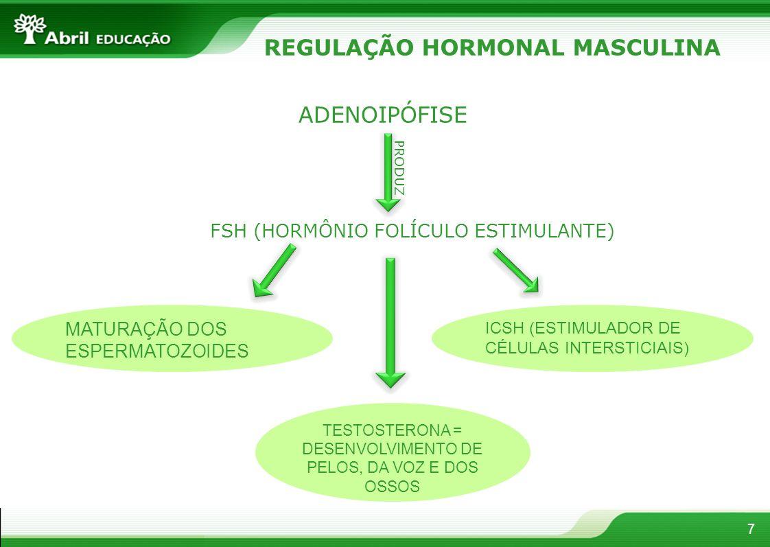 7 REGULAÇÃO HORMONAL MASCULINA FSH (HORMÔNIO FOLÍCULO ESTIMULANTE) ADENOIPÓFISE PRODUZ MATURAÇÃO DOS ESPERMATOZOIDES ICSH (ESTIMULADOR DE CÉLULAS INTERSTICIAIS) TESTOSTERONA = DESENVOLVIMENTO DE PELOS, DA VOZ E DOS OSSOS