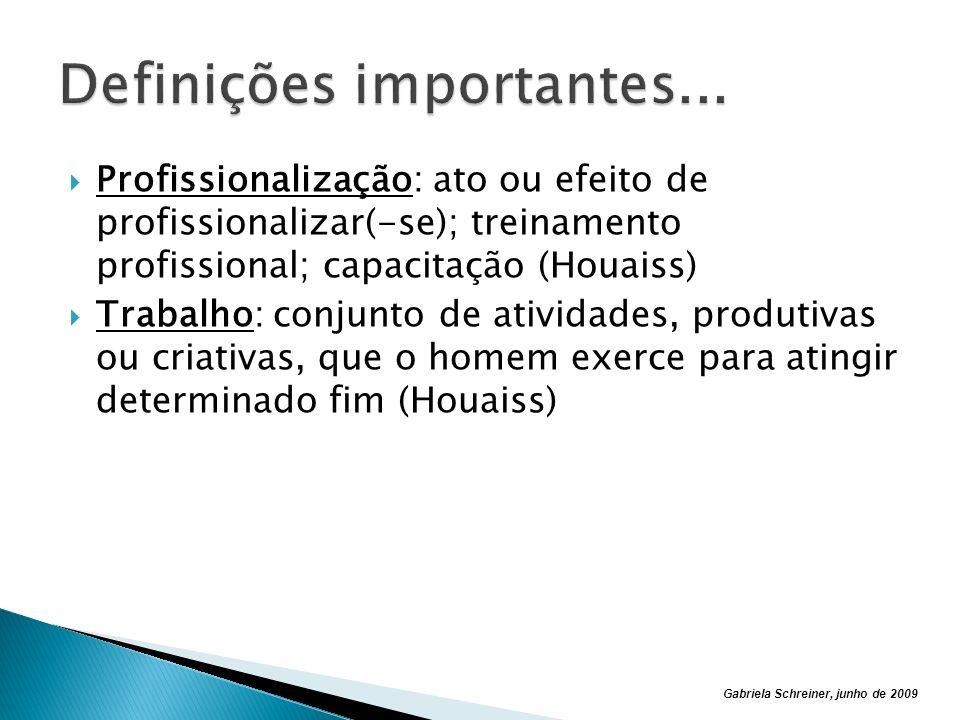Gabriela Schreiner, junho de 2009 Profissionalização: ato ou efeito de profissionalizar(-se); treinamento profissional; capacitação (Houaiss) Trabalho: conjunto de atividades, produtivas ou criativas, que o homem exerce para atingir determinado fim (Houaiss)