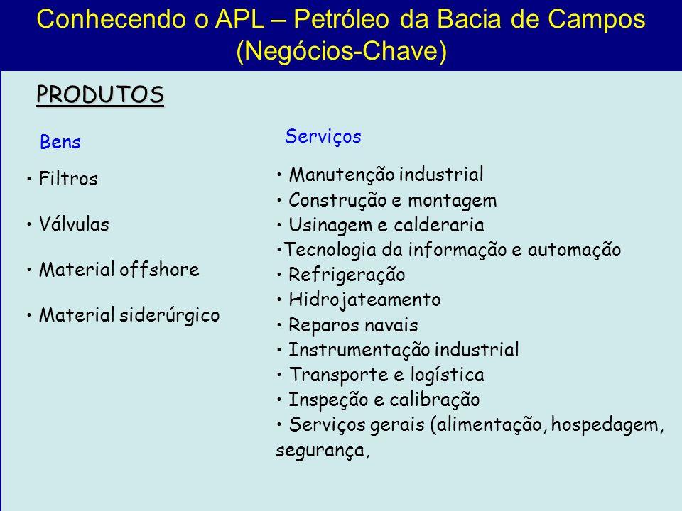 Conhecendo o APL – Petróleo da Bacia de Campos (Negócios-Chave) PRODUTOS Manutenção industrial Construção e montagem Usinagem e calderaria Tecnologia