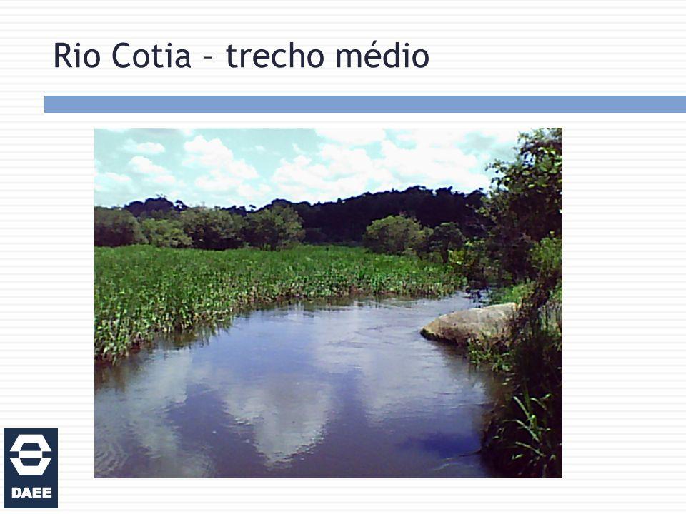 Rio Cotia – trecho médio