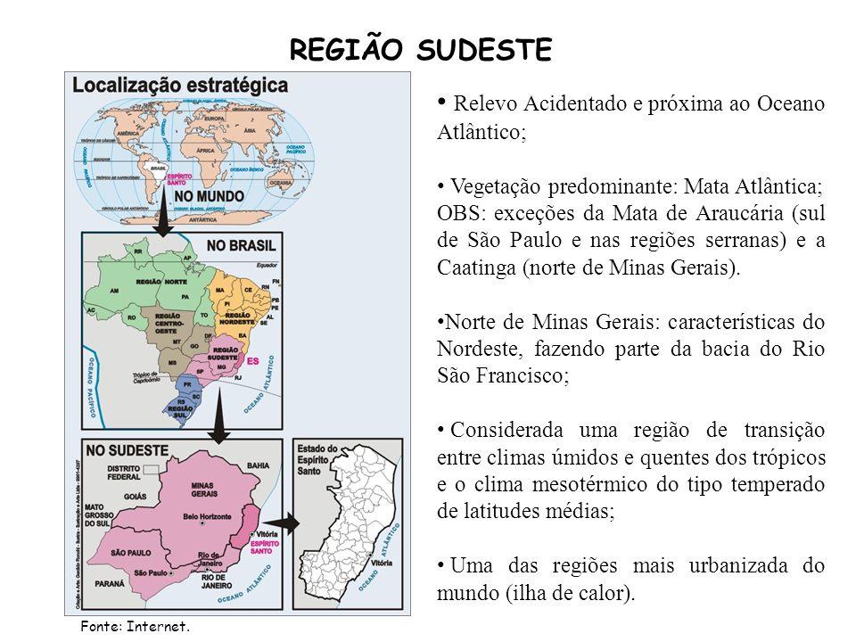 REGIÃO SUDESTE Relevo Acidentado e próxima ao Oceano Atlântico; Vegetação predominante: Mata Atlântica; OBS: exceções da Mata de Araucária (sul de São