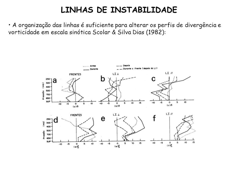 A organização das linhas é suficiente para alterar os perfis de divergência e vorticidade em escala sinótica Scolar & Silva Dias (1982): LINHAS DE INS