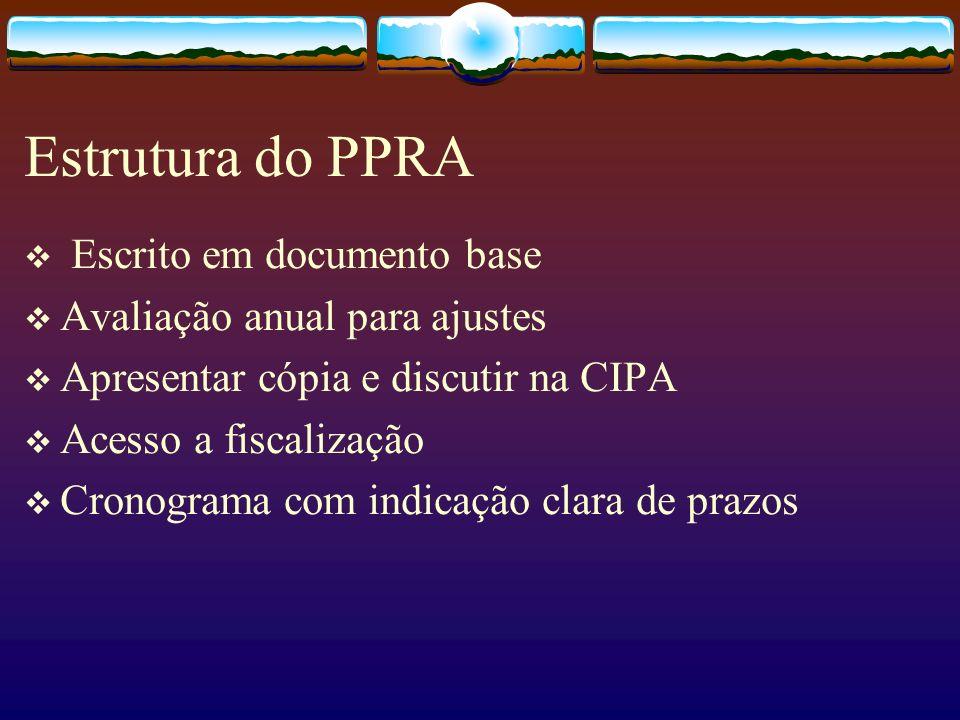 Estrutura do PPRA Escrito em documento base Avaliação anual para ajustes Apresentar cópia e discutir na CIPA Acesso a fiscalização Cronograma com indi