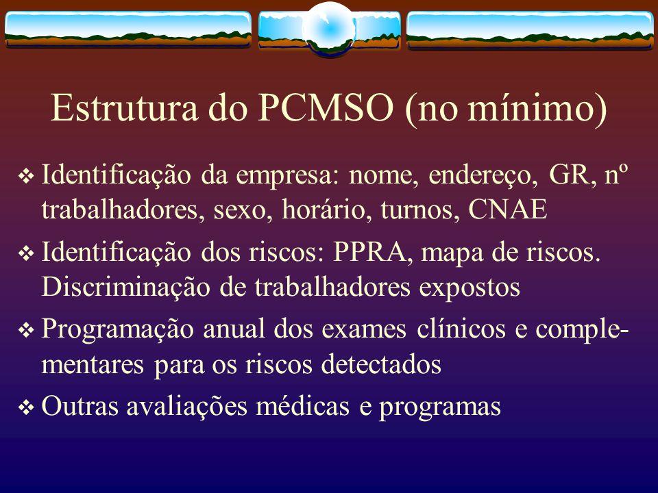 Estrutura do PCMSO (no mínimo) Identificação da empresa: nome, endereço, GR, nº trabalhadores, sexo, horário, turnos, CNAE Identificação dos riscos: P