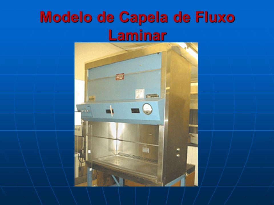 Modelo de Capela de Fluxo Laminar