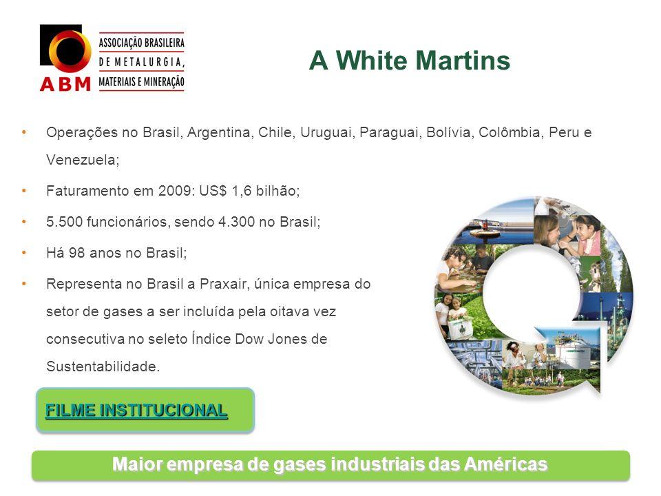 Operações no Brasil, Argentina, Chile, Uruguai, Paraguai, Bolívia, Colômbia, Peru e Venezuela; Faturamento em 2009: US$ 1,6 bilhão; 5.500 funcionários