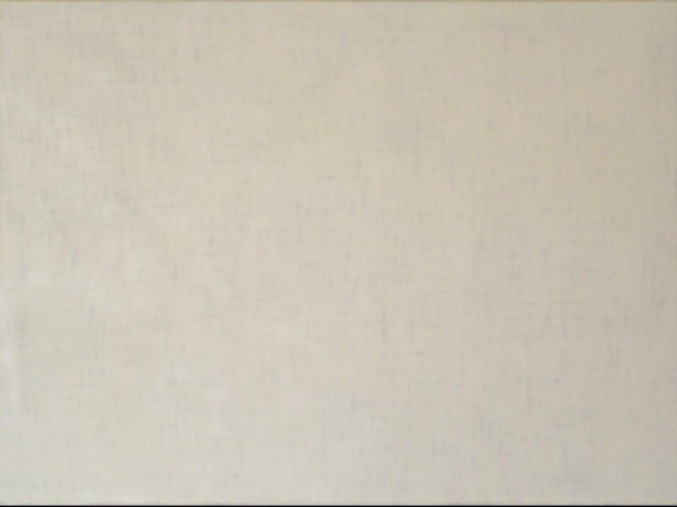 A seguir, passo a passo, o desenvolvimento da obra, iniciando com a tela em branco.