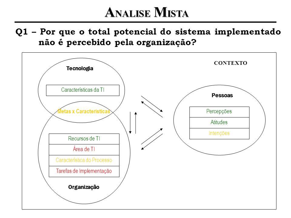 A NALISE M ISTA Q1 – Por que o total potencial do sistema implementado não é percebido pela organização? Pessoas Percepções Atitudes Intenções Organiz