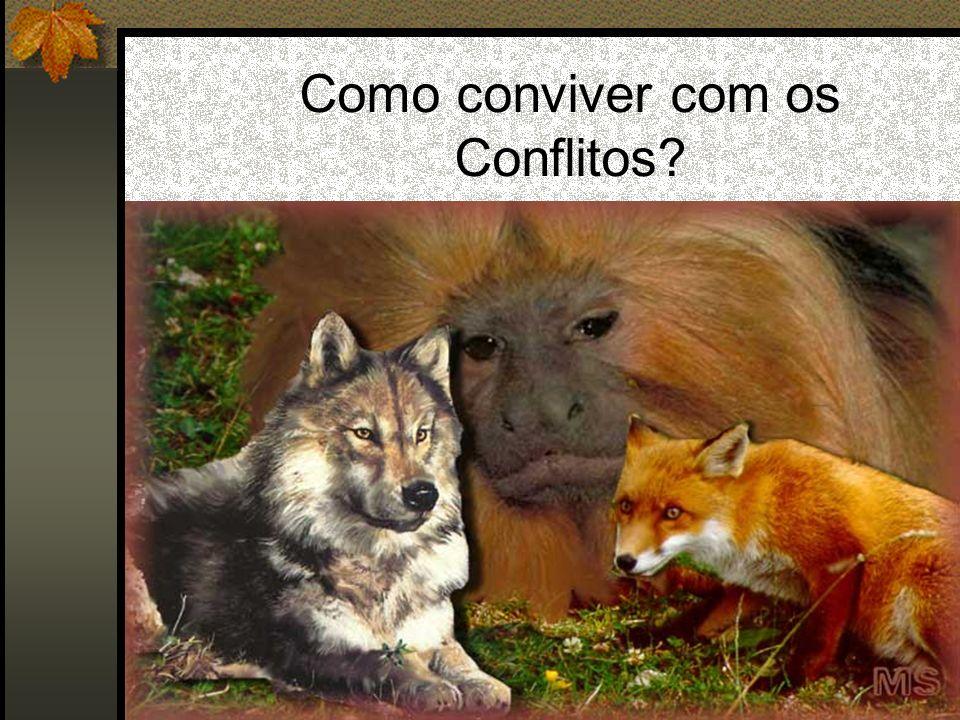 Como conviver com os Conflitos