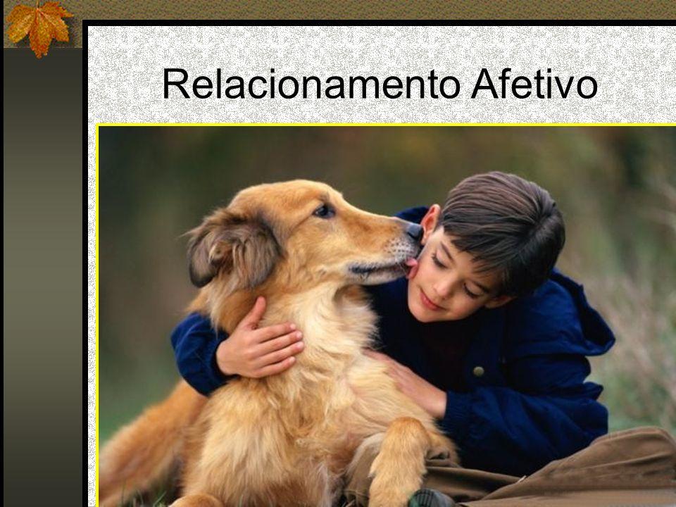 Relacionamento Afetivo