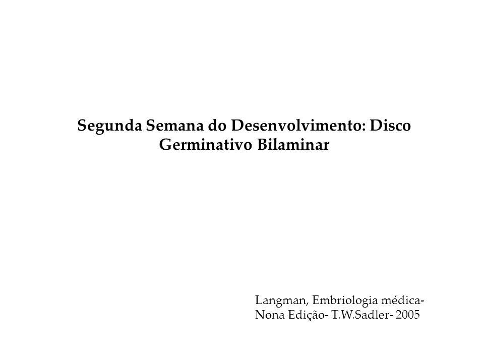 Segunda Semana do Desenvolvimento: Disco Germinativo Bilaminar Langman, Embriologia médica- Nona Edição- T.W.Sadler- 2005