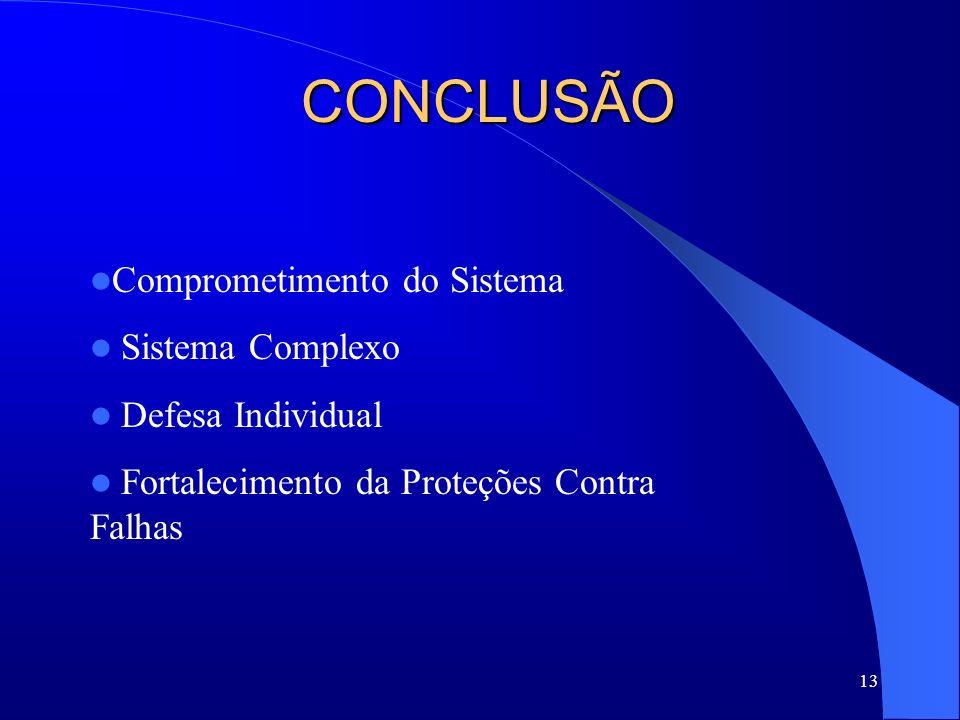 13 CONCLUSÃO Comprometimento do Sistema Sistema Complexo Defesa Individual Fortalecimento da Proteções Contra Falhas