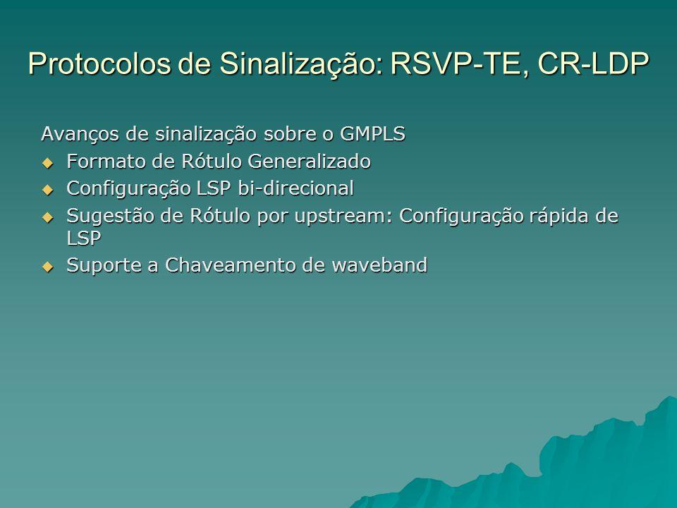 Protocolos de Sinalização: RSVP-TE, CR-LDP Avanços de sinalização sobre o GMPLS Formato de Rótulo Generalizado Formato de Rótulo Generalizado Configur