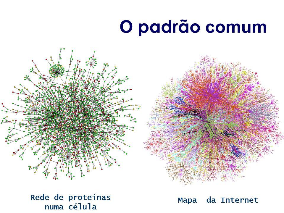O padrão comum Mapa da Internet Rede de proteínas numa célula