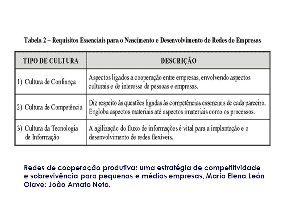 Redes de cooperação produtiva: uma estratégia de competitividade e sobrevivência para pequenas e médias empresas, Maria Elena León Olave; João Amato N