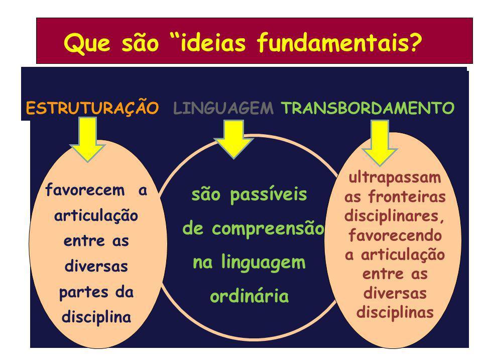 são passíveis de compreensão na linguagem ordinária favorecem a articulação entre as diversas partes da disciplina ultrapassam as fronteiras disciplin